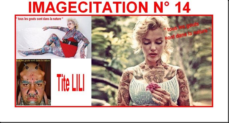 IMAGECITATION 14 DE TITE LILI